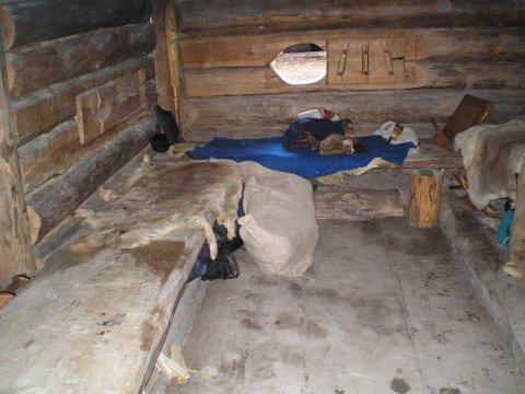 Guļamlāviņas somu  vikingu mājā