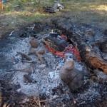 Daži mazi ķopīši  ugunskurā